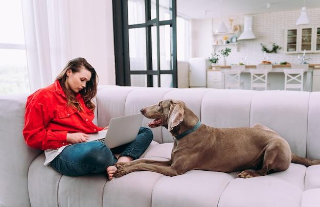 Momentos do estilo de vida de uma jovem em casa. mulher brincando com seu cachorro na sala de estar e trabalhando com o computador