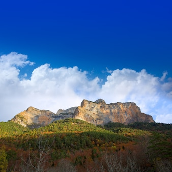 Mondarruego galinero tozal de mayo pirineus valle de ordesa
