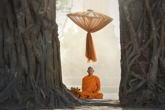 Monge asiático meditando sob uma árvore, tailândia