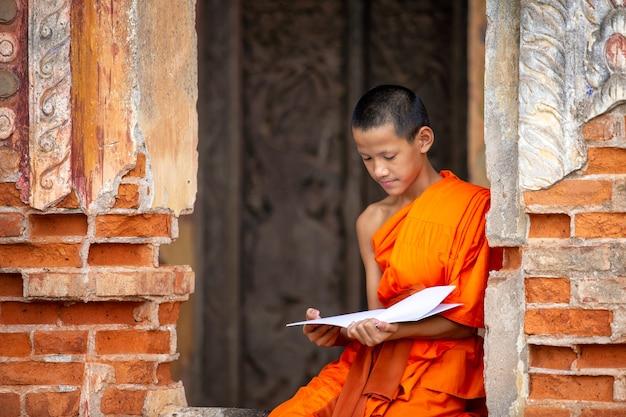 Monges budistas estão lendo aprendizado de principiante.
