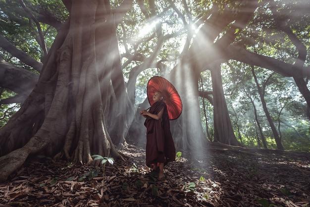 Monges iniciantes em mianmar