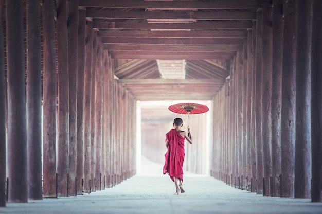 Monges novatos, andar, ligado, antiga, templo, bagan, myanmar