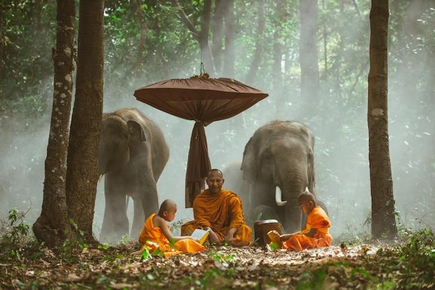 Monges tailandeses estudando na selva com elefantes