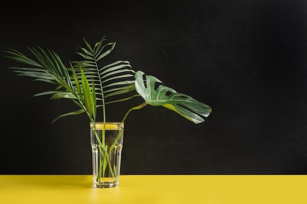 Monstera e folhas de palmeira em vidro em fundo amarelo e preto. conceito e minimalismo.