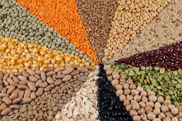 Montagem com grãos comestíveis (sementes) formando um mosaico