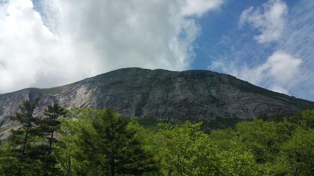 Montanha com árvores