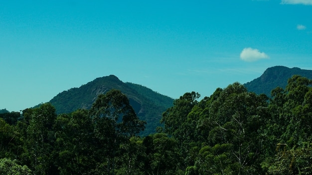 Montanha da base de ghats ocidental