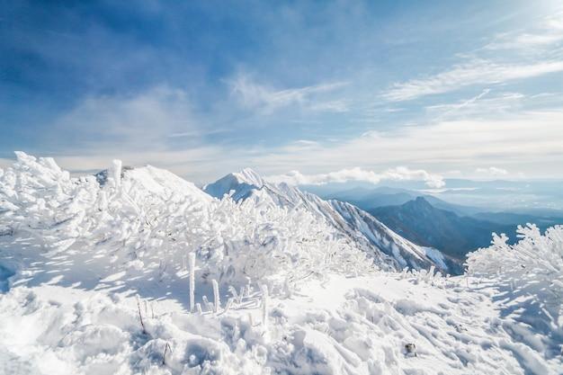 Montanha de daisen no inverno foi encolhida pela neve, japão