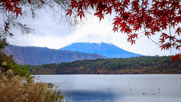 Montanha de fuji na opinião kawaguchiko japn do lago na estação do outono.
