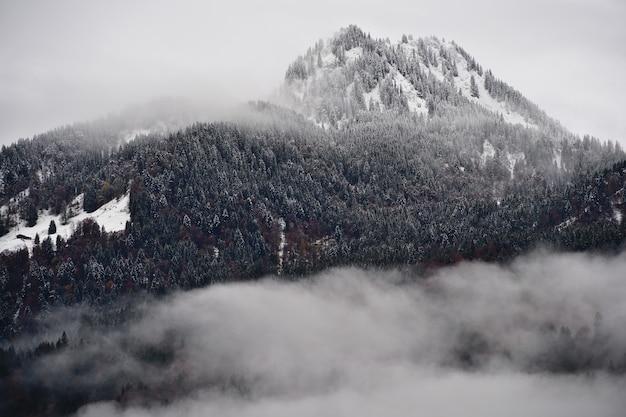 Montanha densamente arborizada com abetos cobertos de neve cercados por nuvens nos alpes