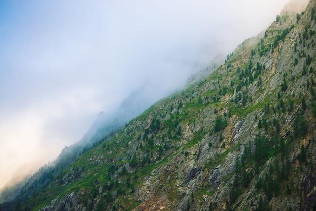 Montanha diagonal com a floresta no fim da névoa da manhã acima. montanha gigante na neblina. o sol da manhã brilha através da névoa. tempo nublado acima de rochas. natureza majestosa da paisagem atmosférica da montanha.