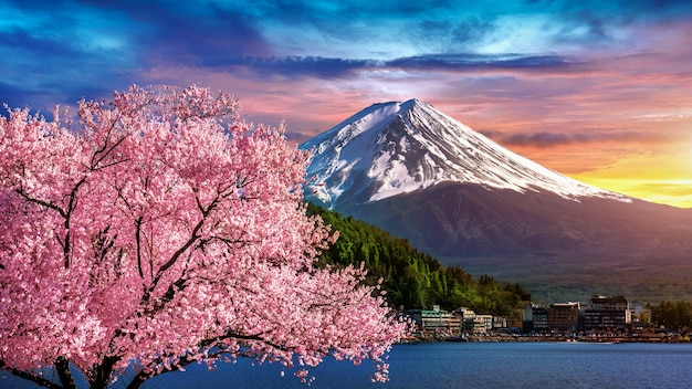 Montanha fuji e flores de cerejeira na primavera, japão.