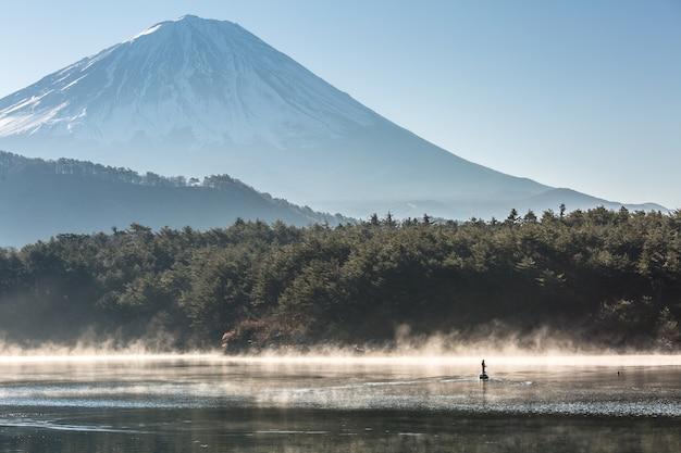 Montanha, fuji, lago, saiko
