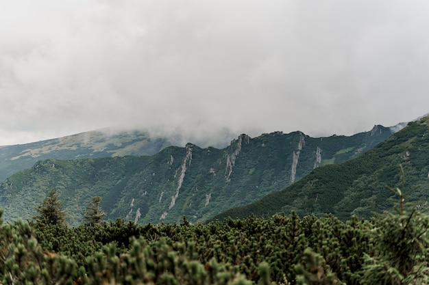 Montanha hoverla com nevoeiro e chuva