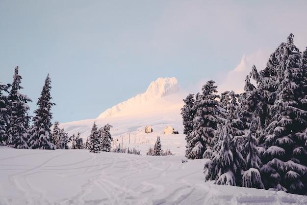 Montanhas cheias de neve branca, abetos vermelhos e cabanas sob um céu claro