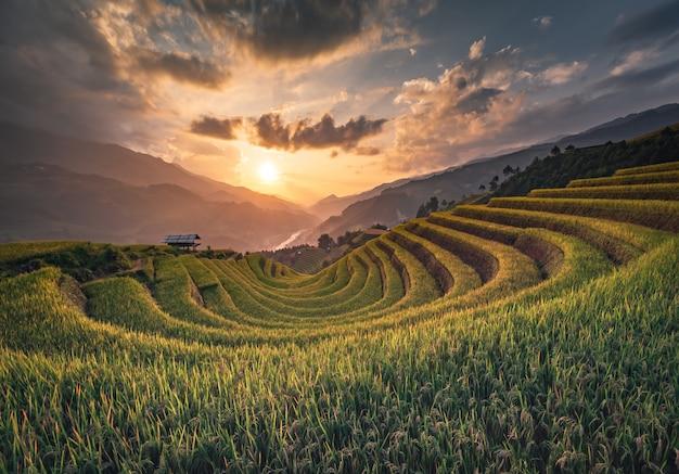 Montanhas de terraço de arroz em mu can chai, vietnã