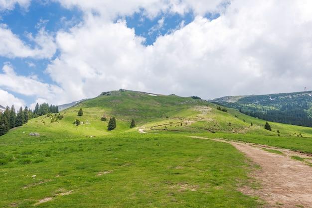 Montanhas dos cárpatos na roménia