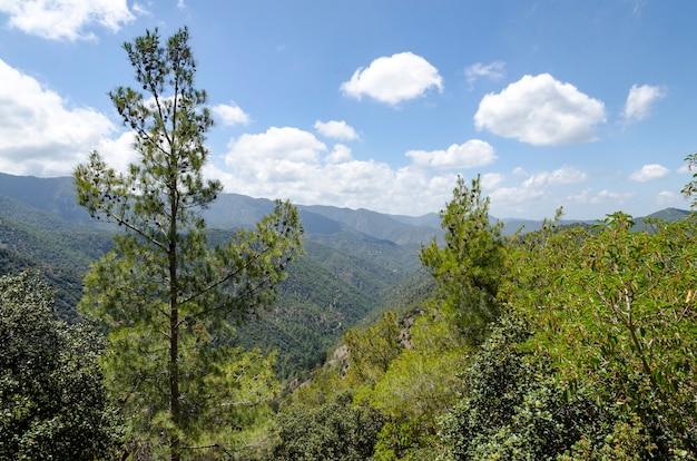 Montanhas e florestas em chipre