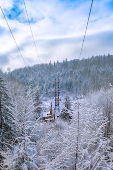 Montanhas no inverno com abetos cobertos de neve.