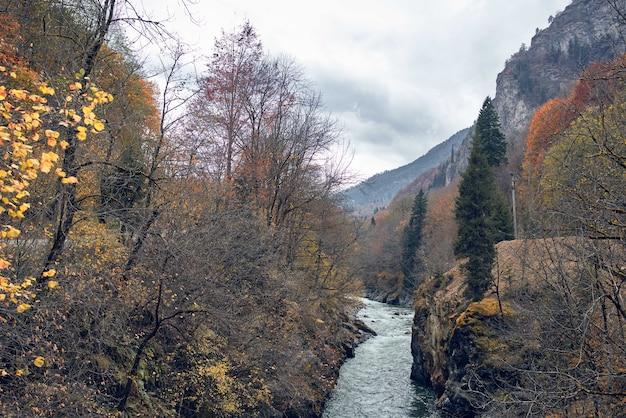 Montanhas outono floresta rio paisagem natureza viagens