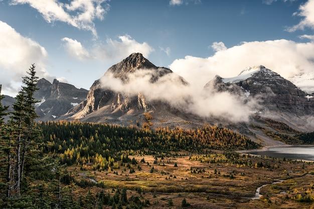 Montanhas rochosas com neblina e céu azul na floresta de outono no parque provincial de assiniboine