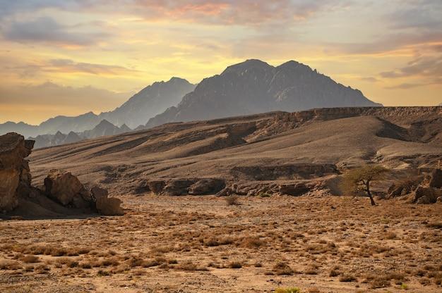 Montanhas sinai montanhas sharm el sheikh na ponta sul do deserto da península sinai