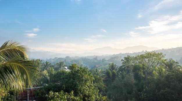 Montanhas verdes cênicas e selvas, ceilão