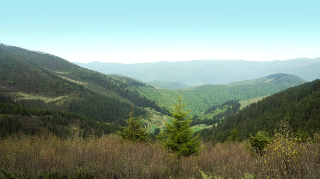 Montanhas verdes