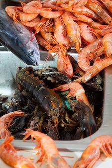 Montão de frutos do mar em bruto