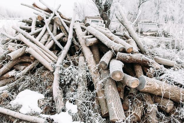 Monte de lenha gelada no quintal. muitos galhos secos cobertos de neve. inverno, frio, geadas prematuras, conceito hoar