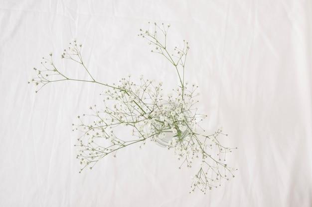 Monte de ramos de planta verde fina com flores em vaso