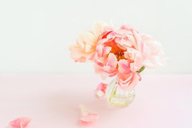 Monte fresco de peônias rosa em um vaso minúsculo