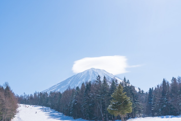 Monte fuji, bela vista de fujiyama