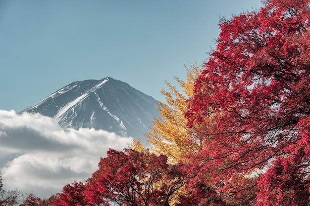 Monte fuji com jardim de bordo no outono em kawaguchiko