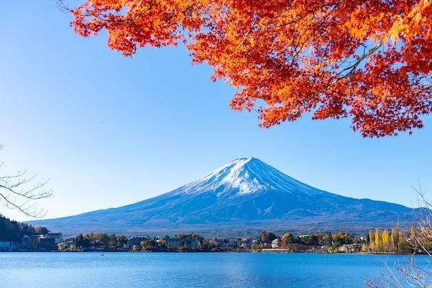 Monte fuji lindo com folha de ácer no outono no japão.