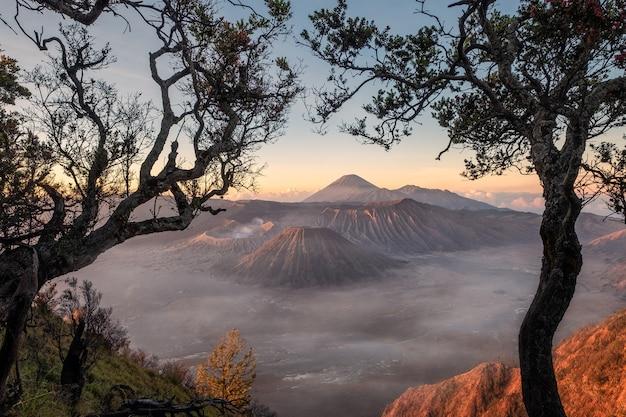 Monte o vulcão um ativo com armação de árvore ao nascer do sol
