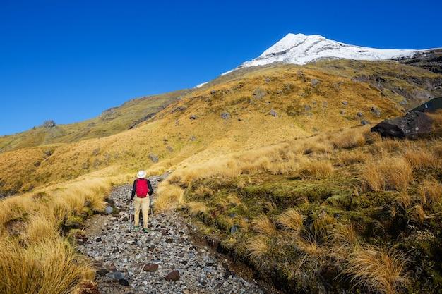 Monte taranaki / monte egmont no parque nacional de egmont, ilha do norte, nova zelândia. lindas paisagens naturais