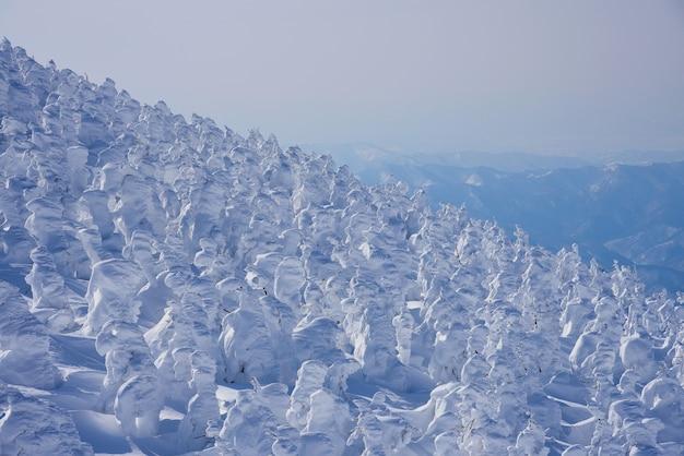 Monte zao na temporada de inverno. as árvores cobertas de neve, os locais as chamam de monstros da neve. prefeitura de yamagata, japão.