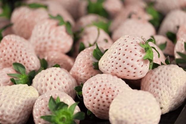 Morango branco (hatsukoi no kaori (nome em japonês) significa o perfume do primeiro amor).