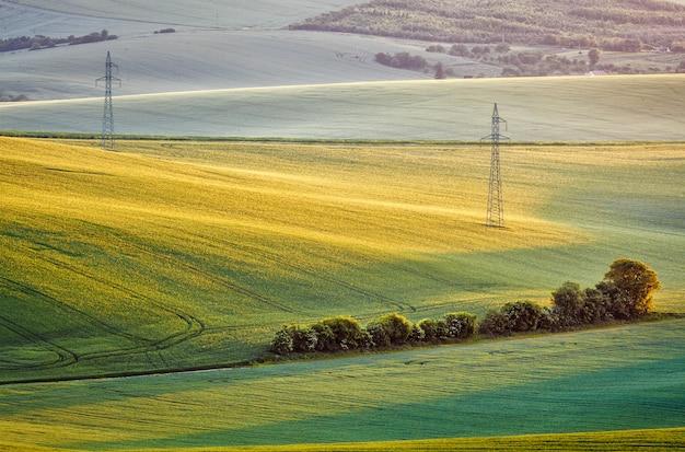 Moravian verão rolamento landcsape