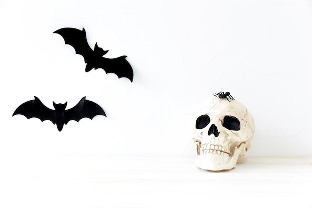 Morcegos perto de caveira e aranha