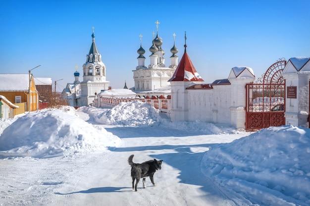 Mosteiro da ressurreição em murom em um dia ensolarado de inverno com neve e um cachorro preto