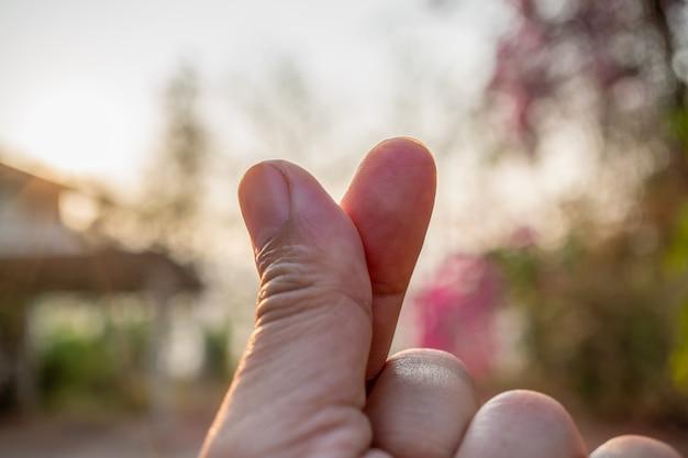 Mostrando mini coração ou mãos em forma de coração durante o nascer do sol da manhã.