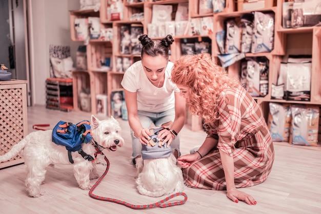 Mostrando roupas especiais. assistente de loja de cabelos escuros em pet shop mostrando roupas especiais para animais de estimação