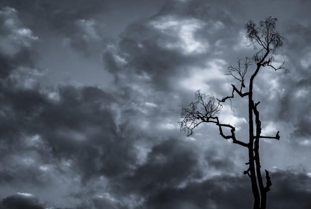 Mostre em silhueta a árvore inoperante no céu dramático escuro e no fundo das nuvens brancas para a morte e a paz.