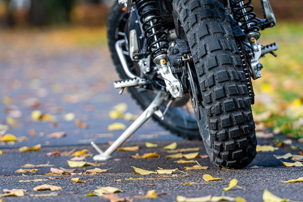 Moto esportiva estacionada na calçada do parque com folhas amarelas de outono