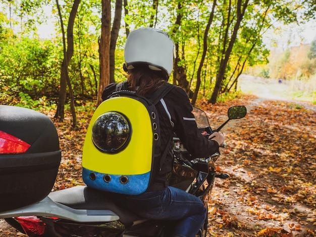 Motociclista em uma motocicleta percorre uma estrada na floresta com um cachorro em uma mochila nas costas
