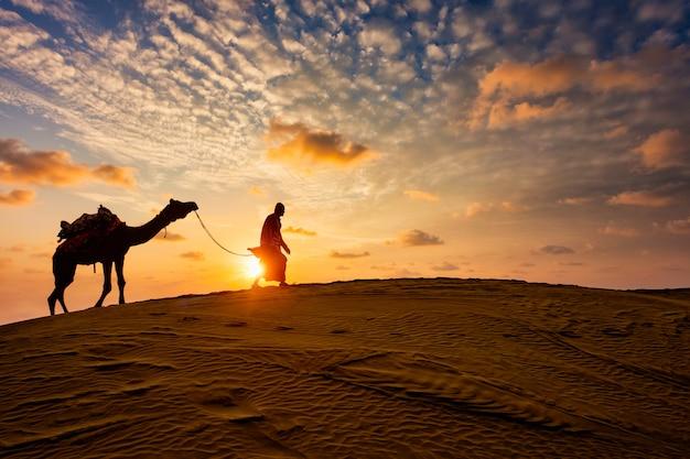 Motorista de camelo indiano cameloer com silhuetas de camelo nas dunas na sunset. jaisalmer, rajasthan, índia