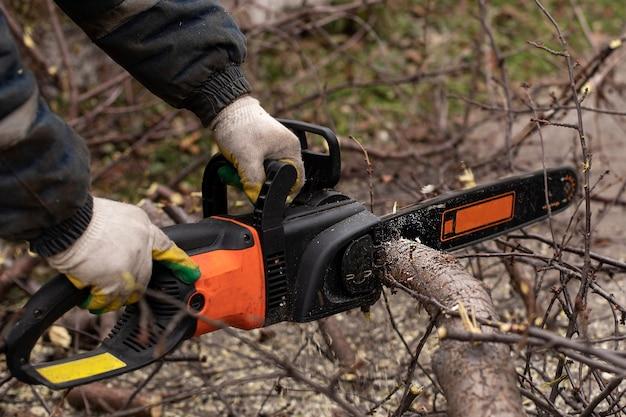 Motosserra em movimento serra uma árvore.