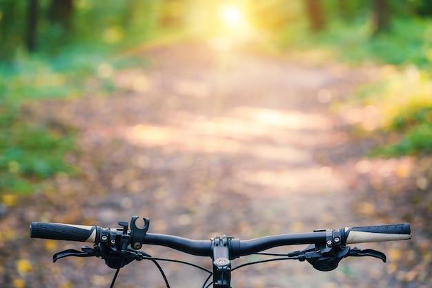 Mountain bike colina descer rapidamente em bicicleta. vista de olhos de motociclistas.